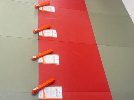 Vier Prüfungsurkunden mit orangen Gürteln